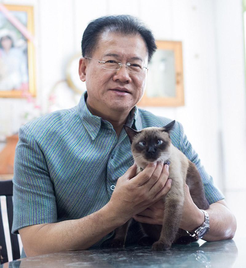 ชมความน่ารักของแมววิเชียรมาศ จากท่านวิเชียร จันทรโณทัย ผู้ว่าราชการจังหวัดนครราชสีมา