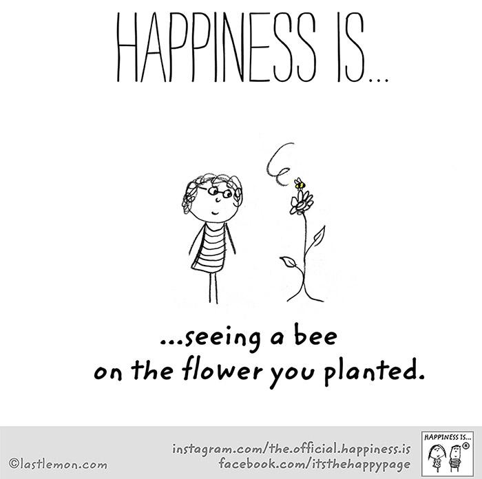 ความสุขที่ได้เห็นผึ้งตอมดอกไม้ที่ปลูก