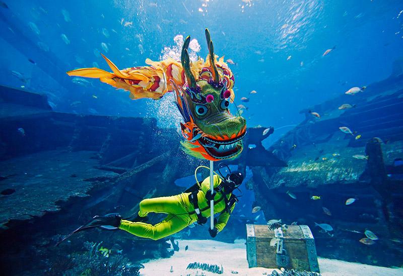 """งาน """"Gong SEA Fa Cai"""" ที่ S.E.A. Aquarium"""