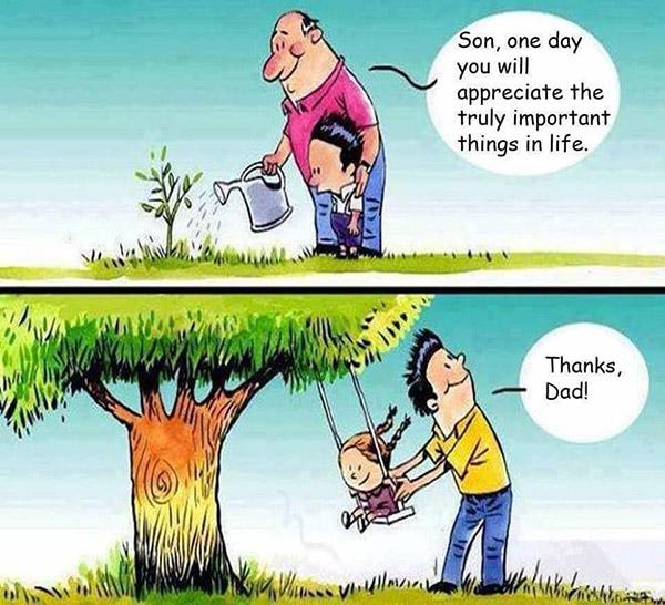 คำพ่อสอน และต้นไม้ของพ่อ