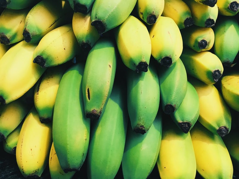 The Mongee Banana กล้วย พืช แปลก