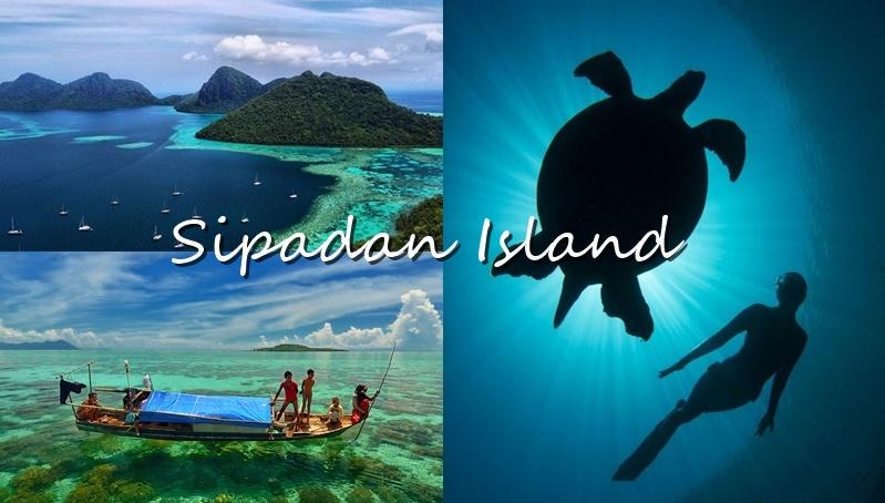 Sipadan Island ทะเล ที่ดำน้ำ สิปาดัน เกาะสวย เต่าทะเล แหล่งดำน้ำสวย