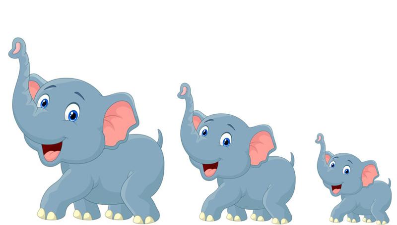 คนแต่งเพลง ช้าง วันช้างไทย เพลงช้าง