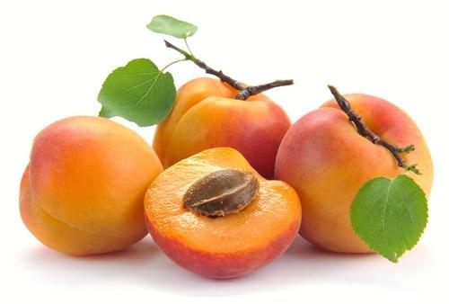 แอปริคอท (Apricot)