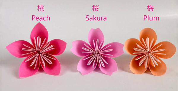 Peach=ท้อ , Sakura=ซากุระ , Plum=บ๊วย