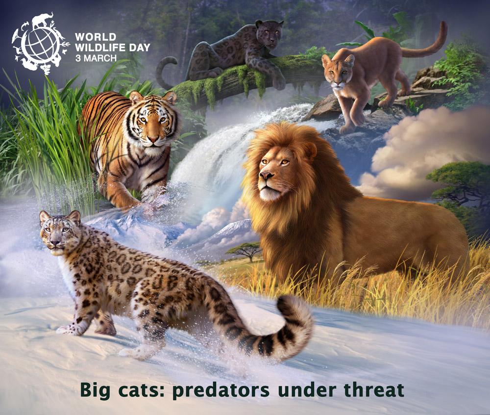 โปสเตอร์ วันสัตว์ป่าและพืชป่าโลก (World Wildlife Day) 3 มีนาคม