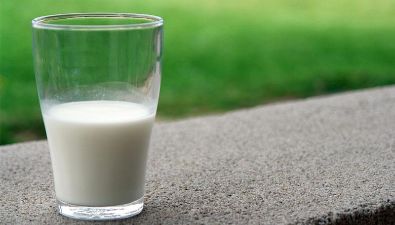 นม ประโยชน์ วันดื่มนมโลก วันสำคัญ วันสำคัญสากล