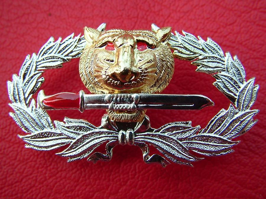 ตราเสือคาบดาบ กองทัพไทย
