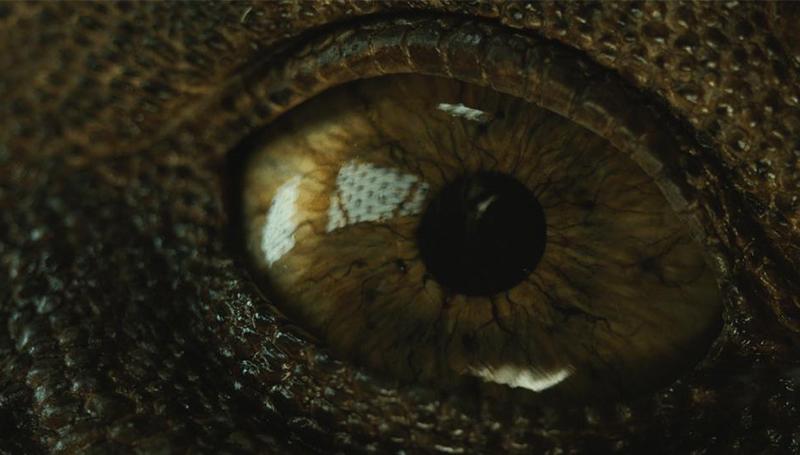 Jurassic World 2 หนังน่าดู หนังสนุก ไดโนเสาร์