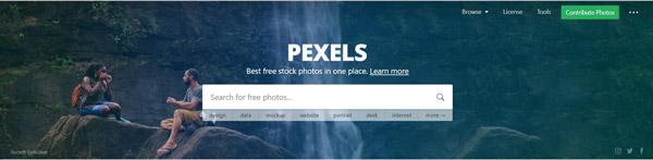pexels.com เว็บไซต์ดาวน์โหลดภาพฟรี