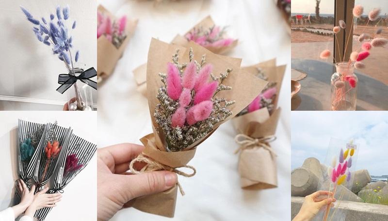 Rabbit Tail Flower ของขวัญน่ารัก ช่อดอกหญ้าหางกระต่าย ดอกไม้แต่งบ้าน เกาหลี ไอเดียของขวัญ