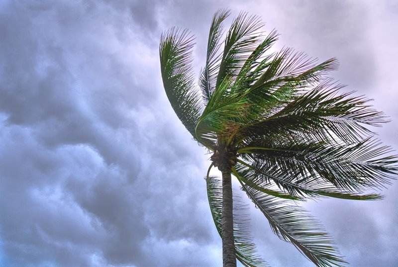 ประเภทของพายุ ที่เราควรรู้