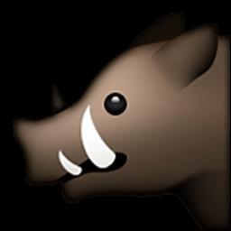 หมูป่า iOS