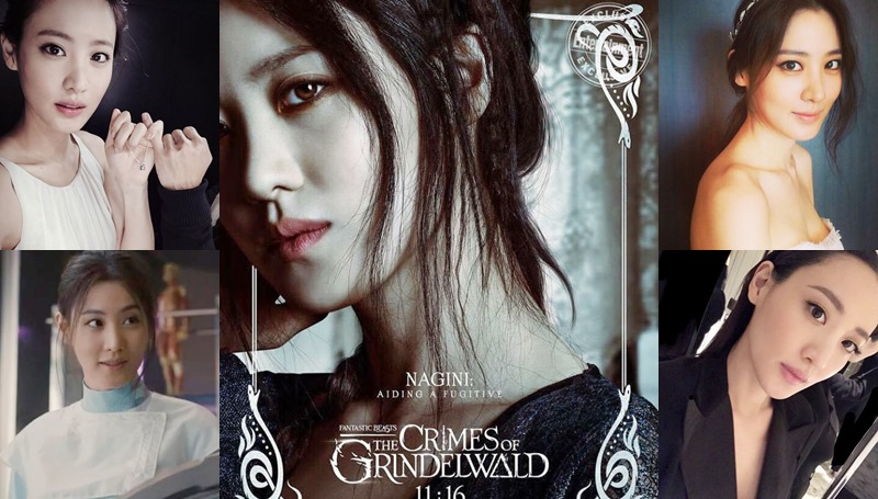 Claudia Kim Fantastic Beasts Fantastic Beasts 2 คลอเดีย คิม ดาราฮอลลีวูด นากินี ผู้หญิงสวย
