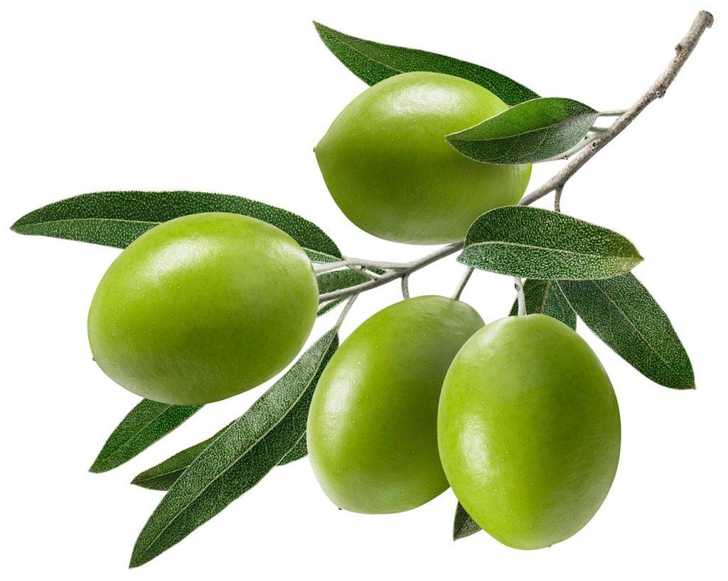 槟榔青 bīnlángqīng ปินหลางชิง มะกอก