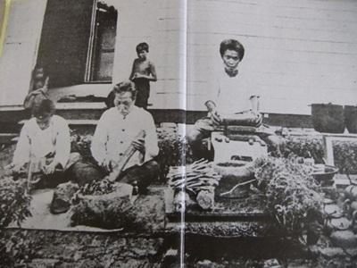 การปรุงยาแผนโบราณ ในสมัยรัชกาลที่ 5 บริเวณหน้าโรงพยาบาลศิริราช
