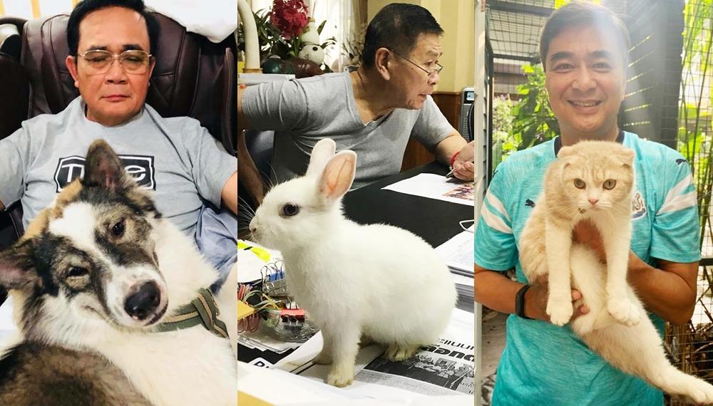 ทาสแมว นักการเมือง ประยุทธ์ จันทร์โอชา สัตว์เลี้ยง อภิสิทธิ์ เวชชาชีวะ เสรีพิศุทธ์ เตมียเวส