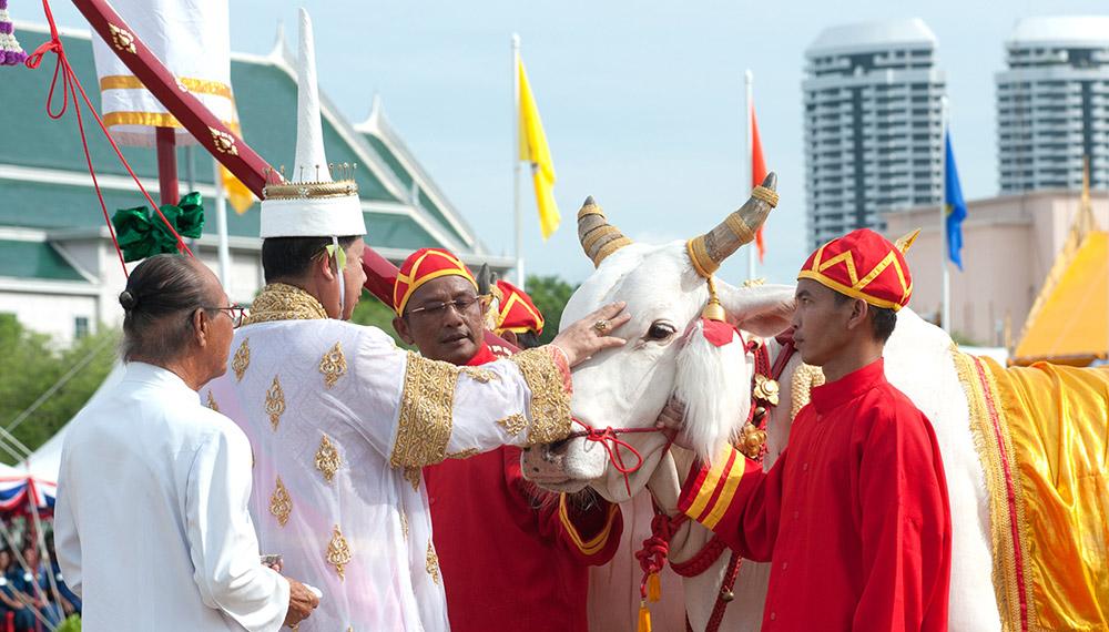 ความเชื่อต่างๆ งานมงคล พิธี พิธีราชาภิเษกสมรส ใบมะตูม