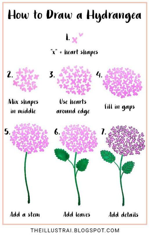 ไอเดียวาดภาพแบบง่ายๆ ดอกไฮเดรนเยีย - Hydrangea