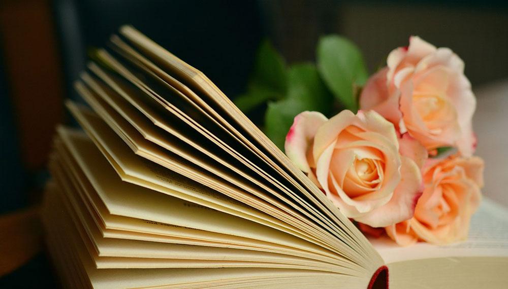 Happy Book ชูการ์เรน นิยายแจ่มใส รักวัยรุ่น