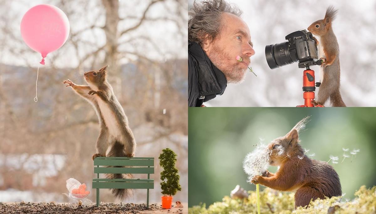 กระรอก ช่างภาพ ภาพน่ารัก สัตว์โลกน่ารัก