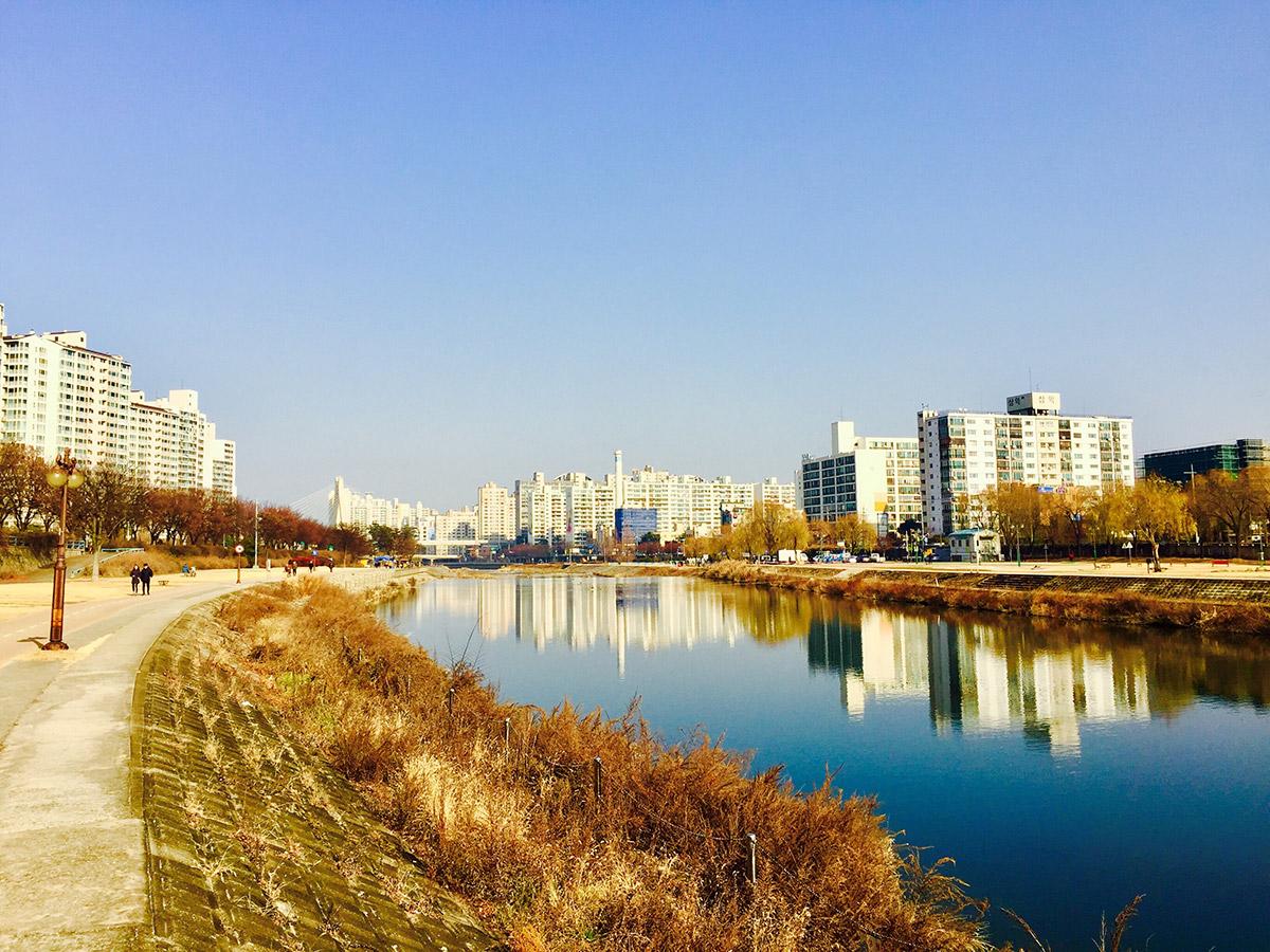 เมืองแทกู ประเทศเกาหลีใต้