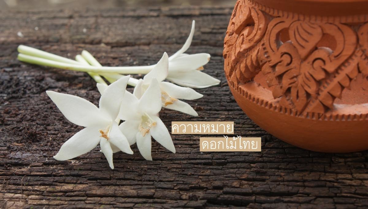 ความหมาย ดอกไม้
