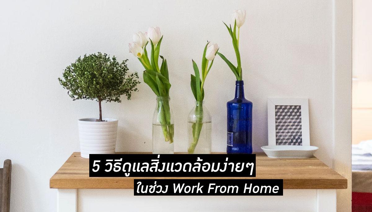 Work From Home ขยะ พลังงาน สิ่งแวดล้อม ไวรัสโควิด-19