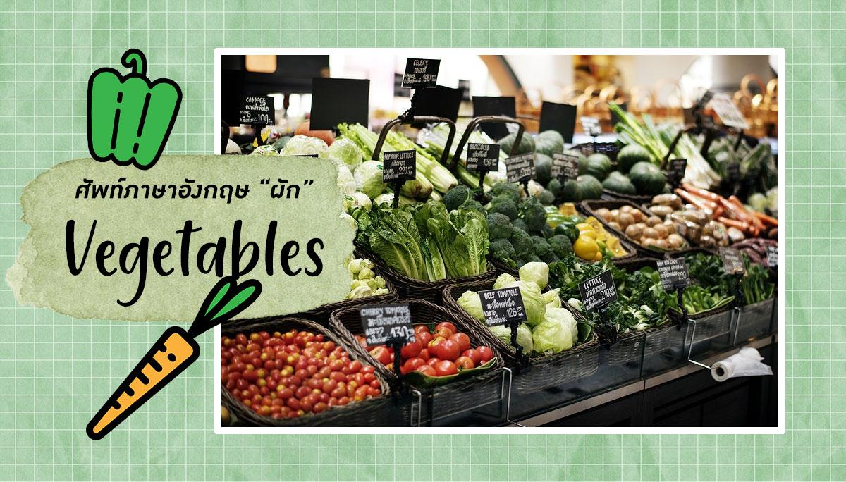 72 คำศัพท์ภาษาอังกฤษเกี่ยวกับผัก Vegetables