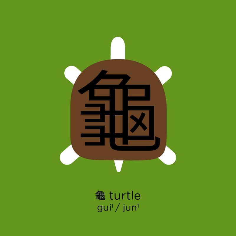 turtle เต่า
