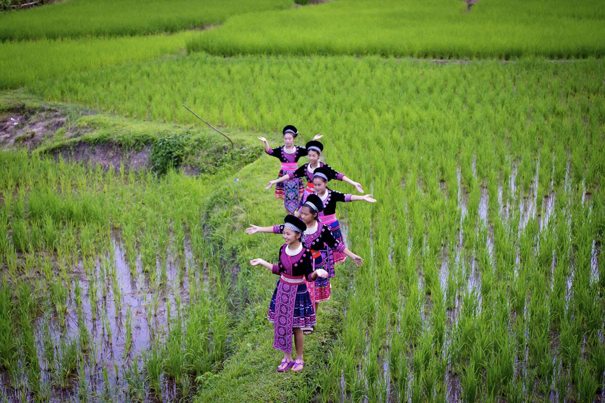 Mae Rim - Chiang Mai Province